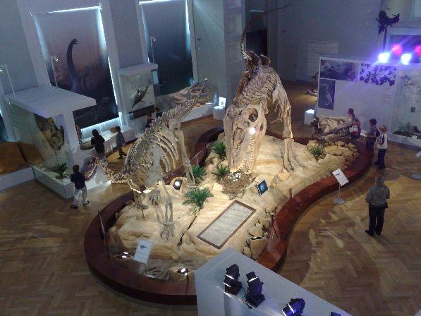 В Финляндии более 300 музеев, наиболее интересным из которых многие считают Музей Естествознания в Хельсинки