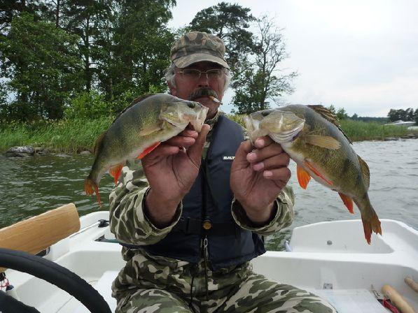 Тишина и красоты северной природы делают рыбалку по-особенному приятной, да и конкурентов на водоемах не так много