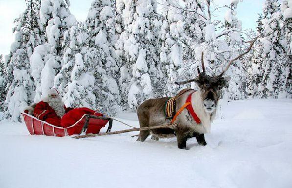 Сделайте своему ребёнку подарок -  устройте ему незабываемое путешествие в снежную Лапландию!