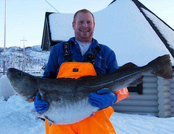 Прежде чем собраться на рыбалку, узнайте, нужна ли вам для этого лицензия!