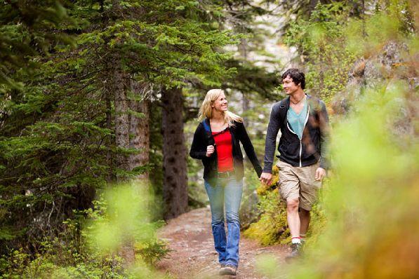 Лучше не отправляться в лес одному, вы можете легко потеряться!